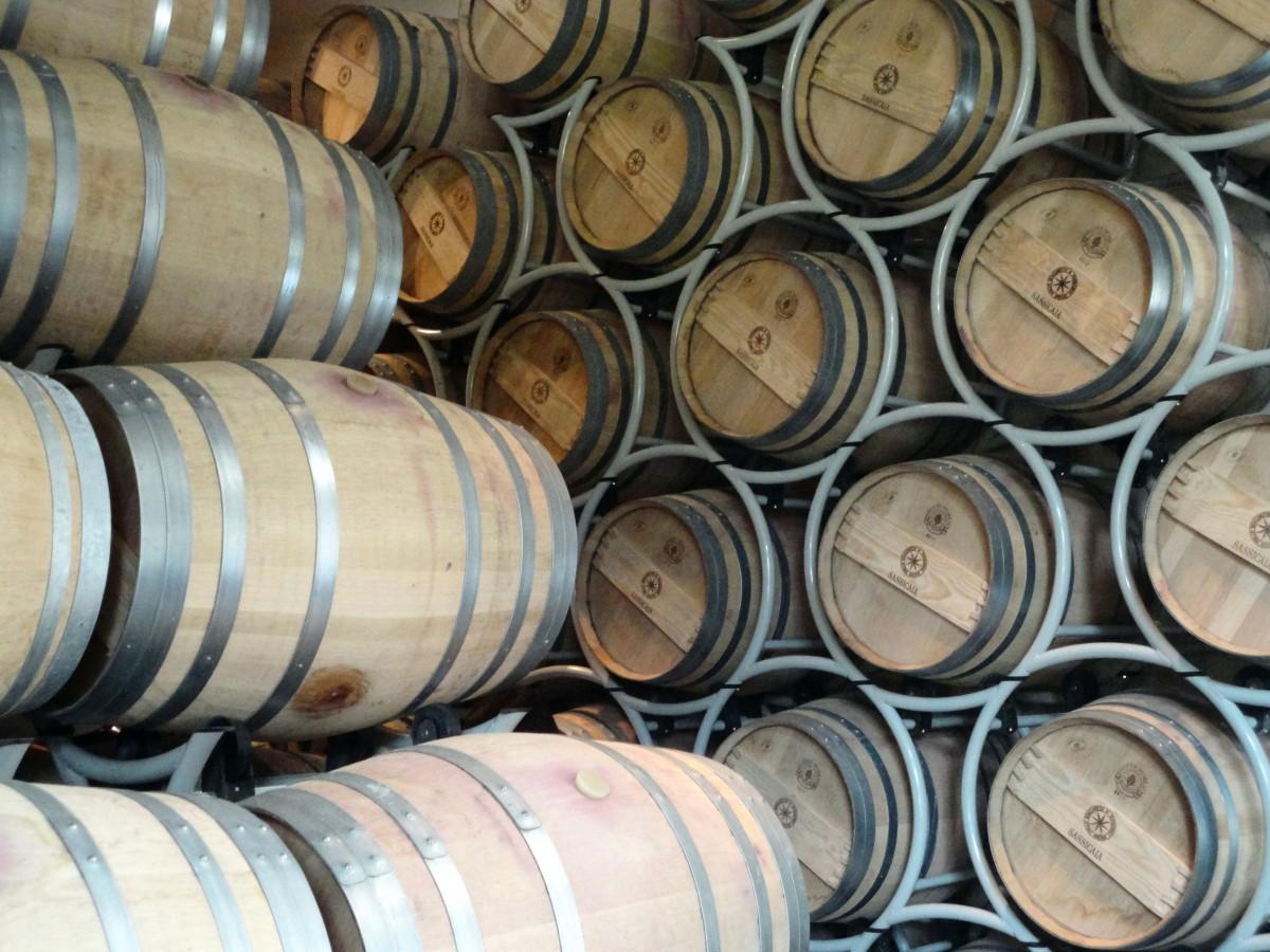 Bolgheri, o vilarejo dos vinhos supertoscanos