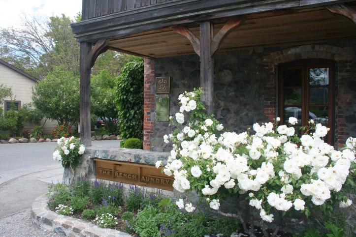 Rosas brancas na entrada do French Laundry, o primeiro e premiado restaurante de Keller