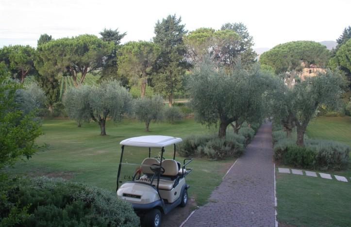 Carrinho de golfe para passear pela vinícola