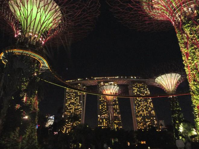Supertrees iluminadas