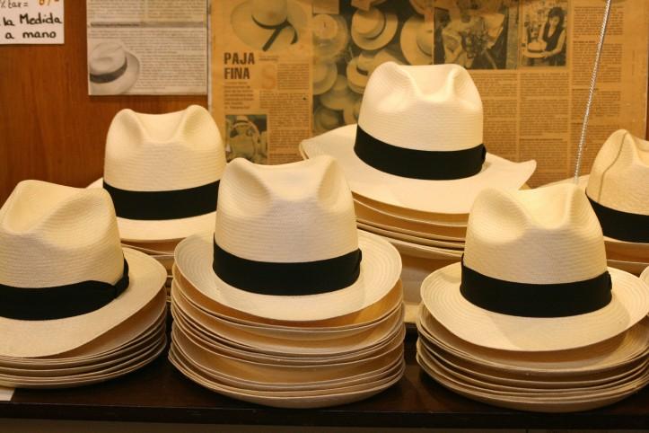 Chapéus panamá finalizados ao gosto do freguês